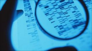 Examining DNA, SPL