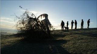 Holy Thorn on Wearyall Hill, Glastonbury