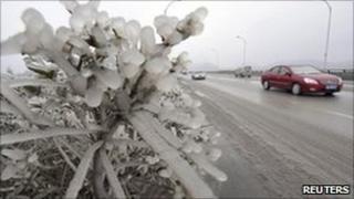 Frozen plants on highway in Guiyang, Guizhou province 3 January 2011.