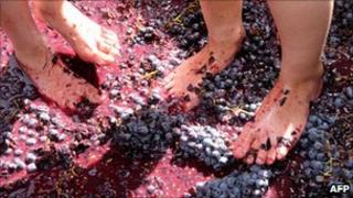 Armenian girls tread grapes with their feet