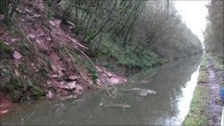 Landslip at the Shropshire Union Canal