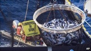 Tuna fishing and Greenpeace protest Phoenix Islands, Kiribati, 27 May 2008