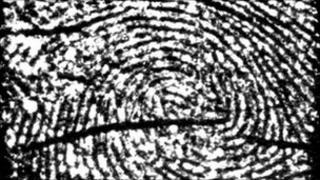 Close-up of a fingerprint