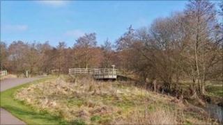 Bridge near Crane Lake in Moors Valley Country Park