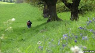 Walkers on the Offa's Dyke trail Photo: Rob Dingle