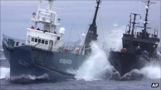 Clash between whaling ship and protestors