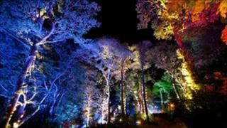 The Enchanted Forest Pitlochry