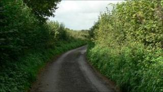 Country lane in Somerset