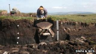 The excavated cist at Whitehorse Hill on Dartmoor