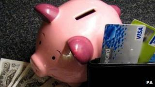 Piggy bank and money and credit cards