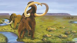 Artist impression of mammoths in Jersey