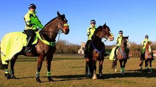 Norfolk's special officers on horseback