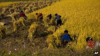 North Korean farmers work in a field along a highway outside the eastern coastal city of Wonsan, North Korea, 2011