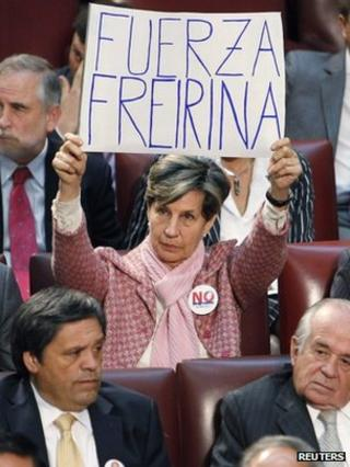 Isabel Allende holds up a placard in support of Freirina residents (21 May 2012)
