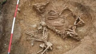 Anglo-Saxon grave of woman and cow