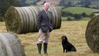 Nick Hewer as The Farm Fixer