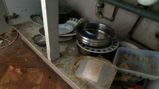 Mouse droppings in the kitchen units