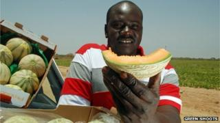 A melon seller in Senegal