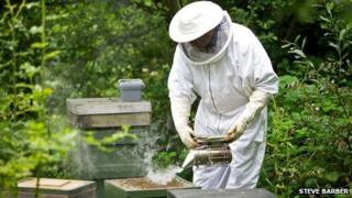 United Utilities' Mike Luke at work with his bees at Ulverston's sewage works