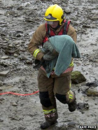 Rob Donnelly rescues Bob the seal from Great Ouse mud flats