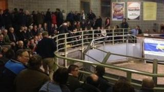 Dairy Prices meeting