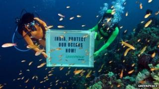 """Greenpeace divers hold banner underwater with words """"India, Protect our oceans now"""" written on it"""