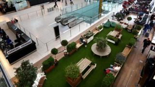 The T5 garden