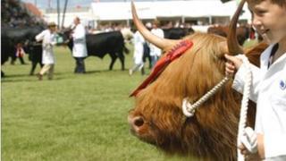 Royal Highland Show