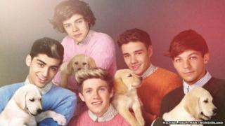 One Direction and puppies