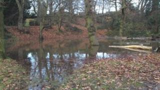 Cotteridge Park on Sunday