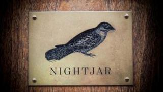 Bar Nightjar logo