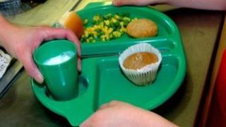 School meal generic