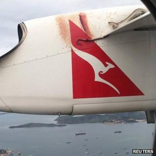 Python wrapped around wing of plane. 9 Jan 2013