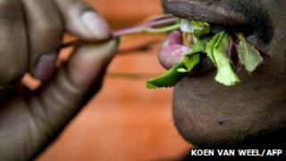 Man chewing khat