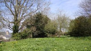 Lord's Garden, Ruthin