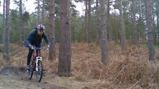 Swinley Forest mountain biking