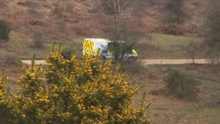 Police van in New Forest