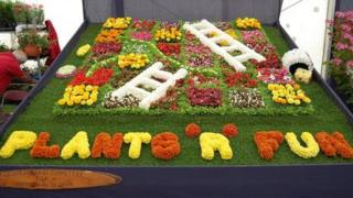 Snakes and Ladders floral display