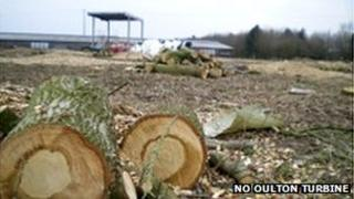 Felled trees at Oulton