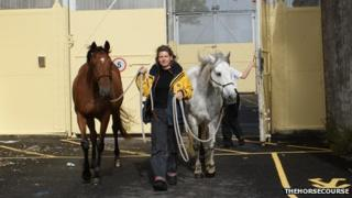 Harriet Laurie with two of her horses