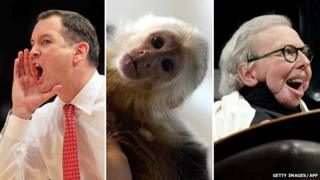 Mike Rice, Mally the monkey and Roger Ebert