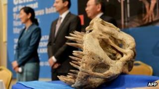 Officials stand next to part of a 70- million-year-old, nearly complete Tyrannosaurus Bataar skeleton that will be repatriated to the government of Mongolia on 6 May 2013 in New York