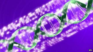 Conceptual computer artwork of a DNA (deoxyribonucleic acid) double helix