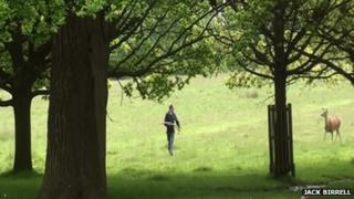 Man chased by a deer at Richmond Park