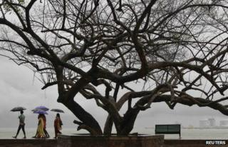 Beachgoers stroll along the Fort Kochi beach while holding umbrellas during a rain shower in the southern Indian city of Kochi May 29, 2013