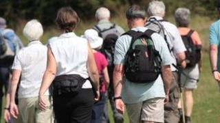 A group of ramblers walking in the countryside