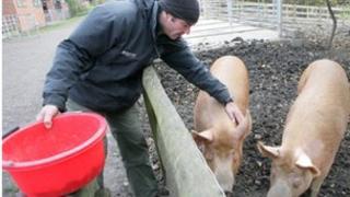 Bill Quay Community Farm