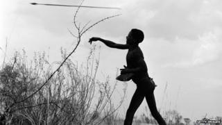 Circa 1956: A South African bushman hunting big game throws his spear