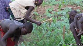 Omo Valley farmers