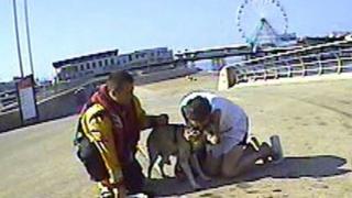 RNLI volunteer reunites dog with owner